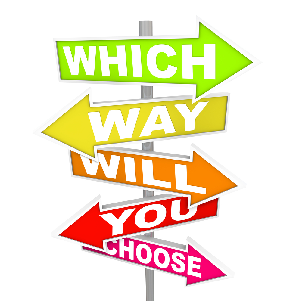 choices for software development