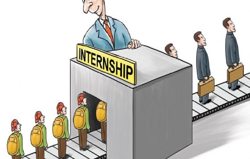 software developer internship