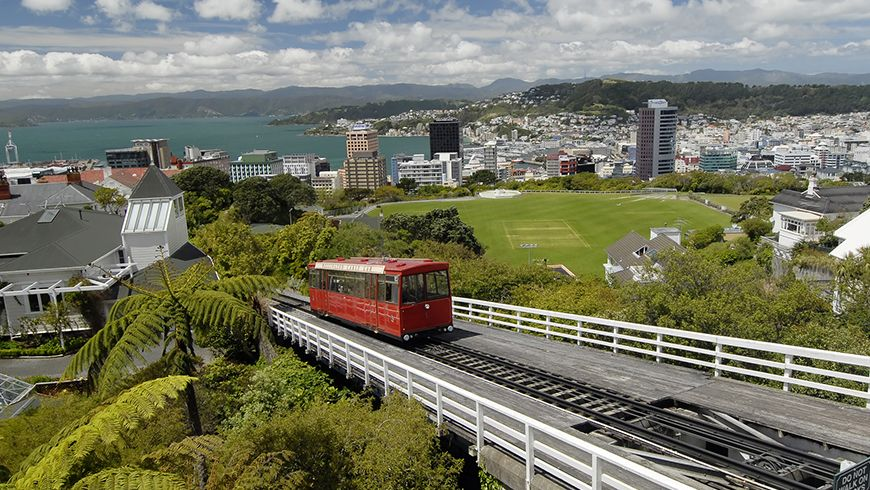 software developer jobs in Wellington