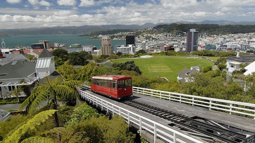 software developer jobs in Wellington