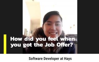 First job as a software developer